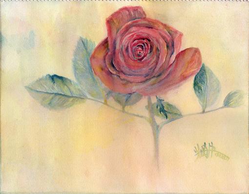 003・水彩完成「赤薔薇」・510.jpg